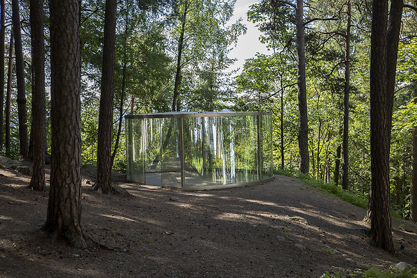 glass in forest